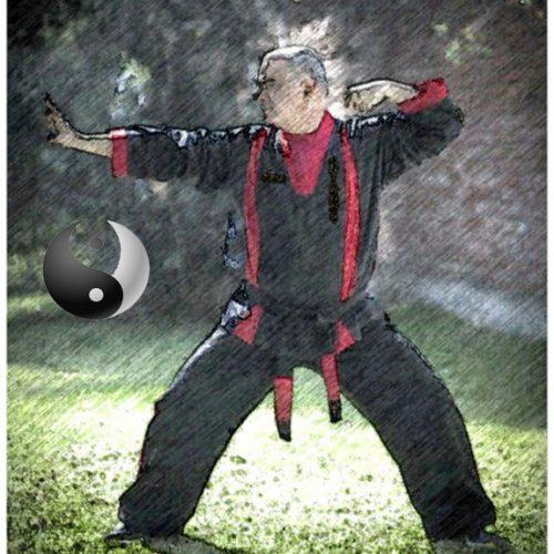 chi kung 22 kensai