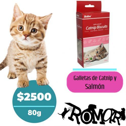 galletas-catnip