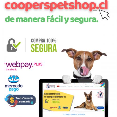 visita-sitio-web